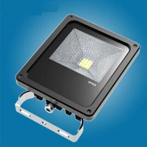 10W New LED flood light